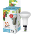 Лампа LED-R50-econom 3W/4000K 220В Е14 250Лм ASD
