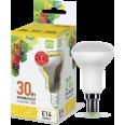 Лампа светодиодная LED-R50-econom 3Вт 220В Е14 3000K 250Лм ASD