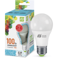 Лампа LED-А60-econom 11W/4000К 220В Е27 900Лм ASD