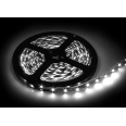 Лента светодиодная LS 50CW-60/65 60LED 14.4Вт/м 12В IP65 холодный белый 6000K IN HOME