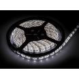 Лента светодиодная LS 28CW-60/65 60LED 4.8Вт/м 12В IP65 холодный белый 6000K IN HOME